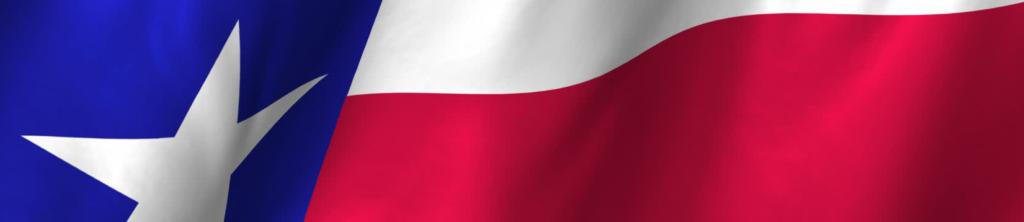 tx-flag2